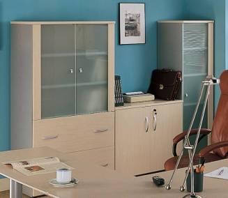 Tecnica-de-Oficina-Armario_vitrina_IMN_2