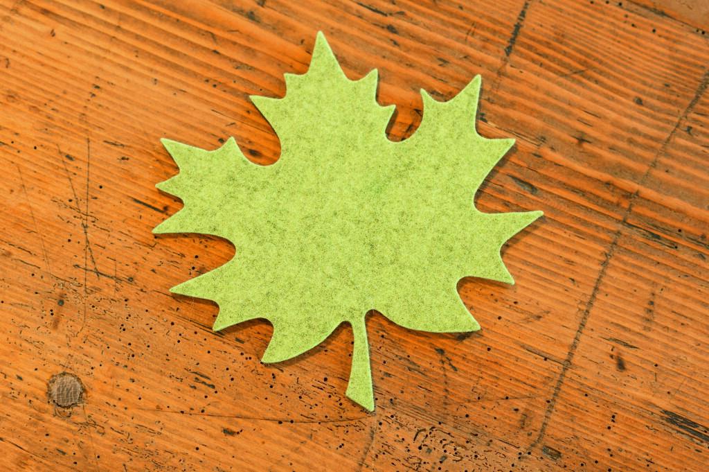 Vezua, il portale degli acquisti green ed etici che dà vita agli ecosistemi forestali