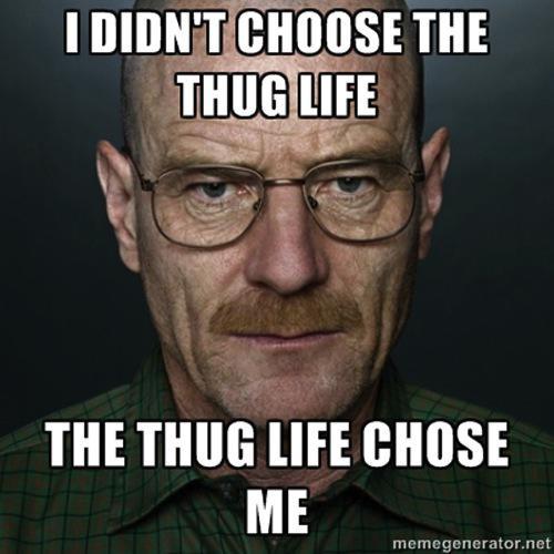 thug life de walter white
