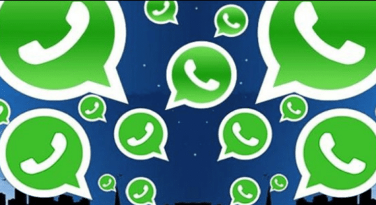 administrador de grupo de WhatsApp