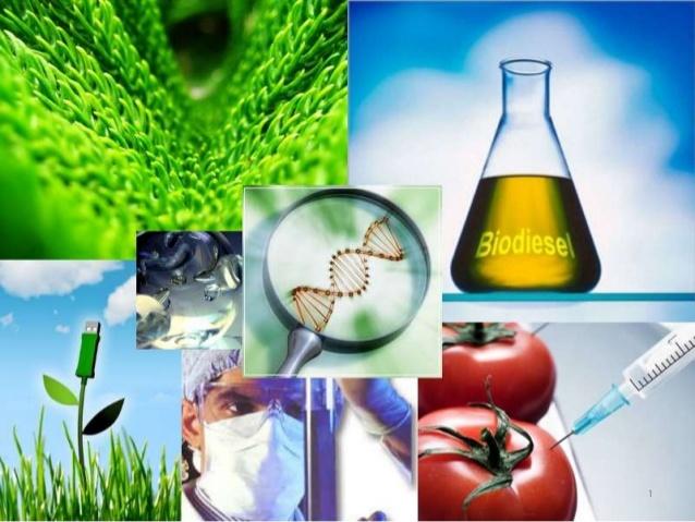 Biotecnologia ambiental2