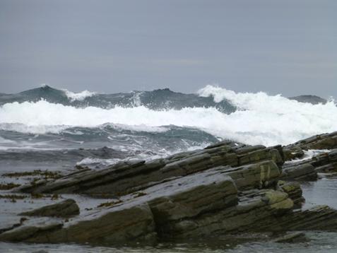 Tecnopia-Wello kuva aalloista