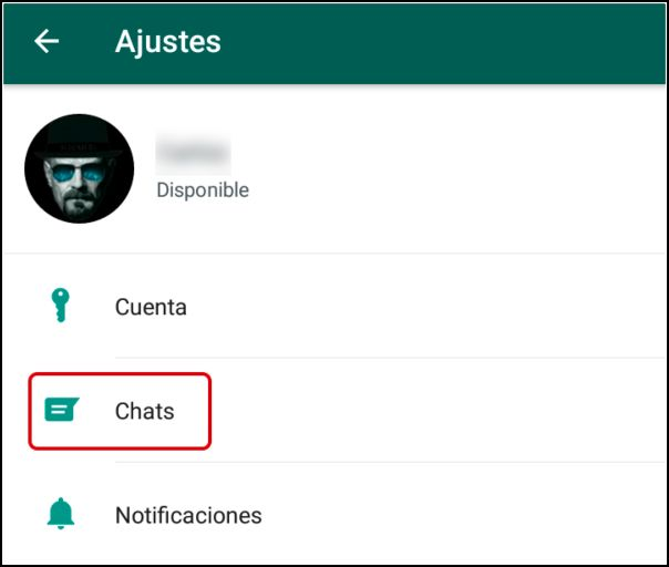 entrar chats WhatsApp