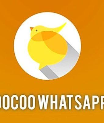 Coo Coo WhatsApp