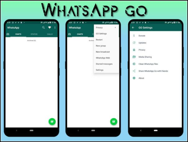 apariencia de WhatsApp GO