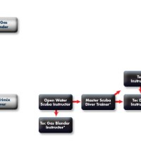 New Courses Flowchart