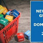 Newbies-Guide-To-Domaining-In-2019