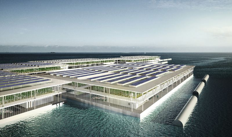 Floating Farms