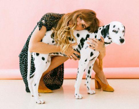 dog grooming workshops