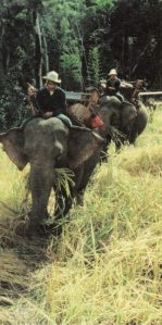 TECTON-Reise 2001 Thailand