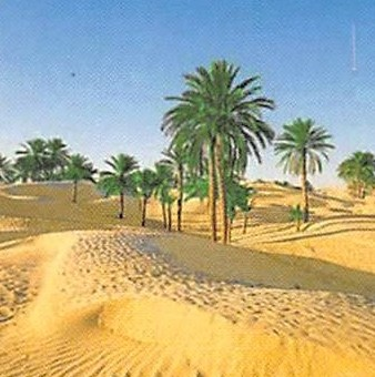 TECTON Trophy - Eine Reise durch Tunesien vom 3. bis 8. Januar 2004