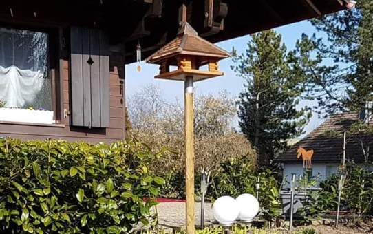 Das Vogelhaus aus Kupfer
