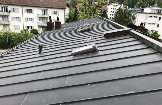 Dach-Bestandesaufnahme Meilen (ZH)