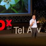 Shimon Steinberg: Natural pest control … using bugs!