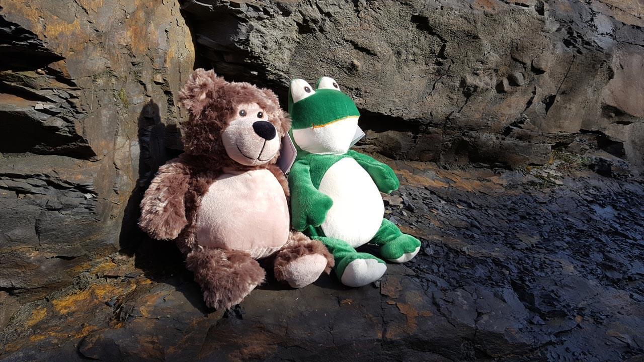Bobby Bär und Frosch sonnen sich