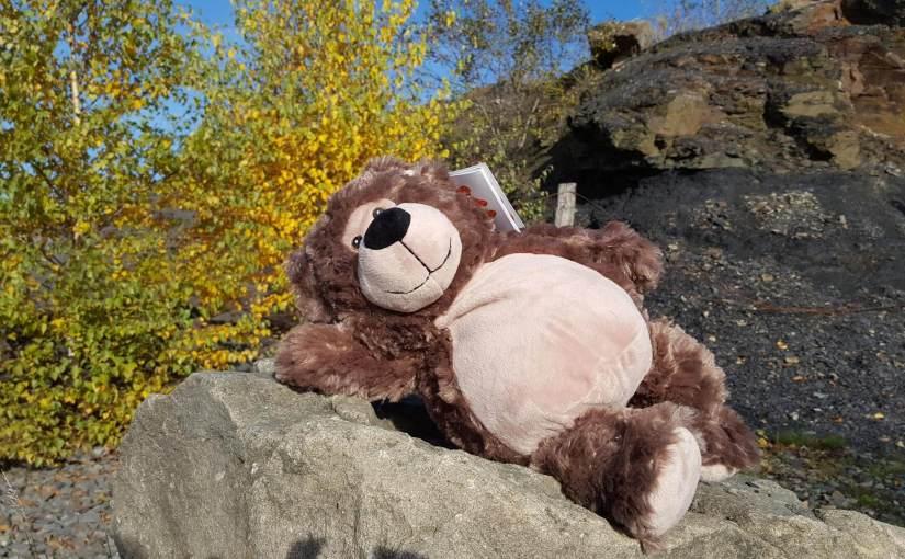 Herbstspaziergang mit Teddy