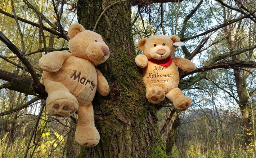 Teddy – weißt Du wie der Name entstanden ist?