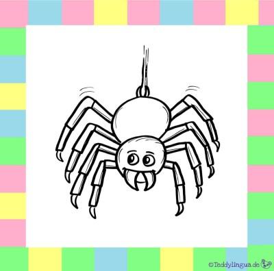 Spinne zum Ausmalen auf weißem Hintergrund