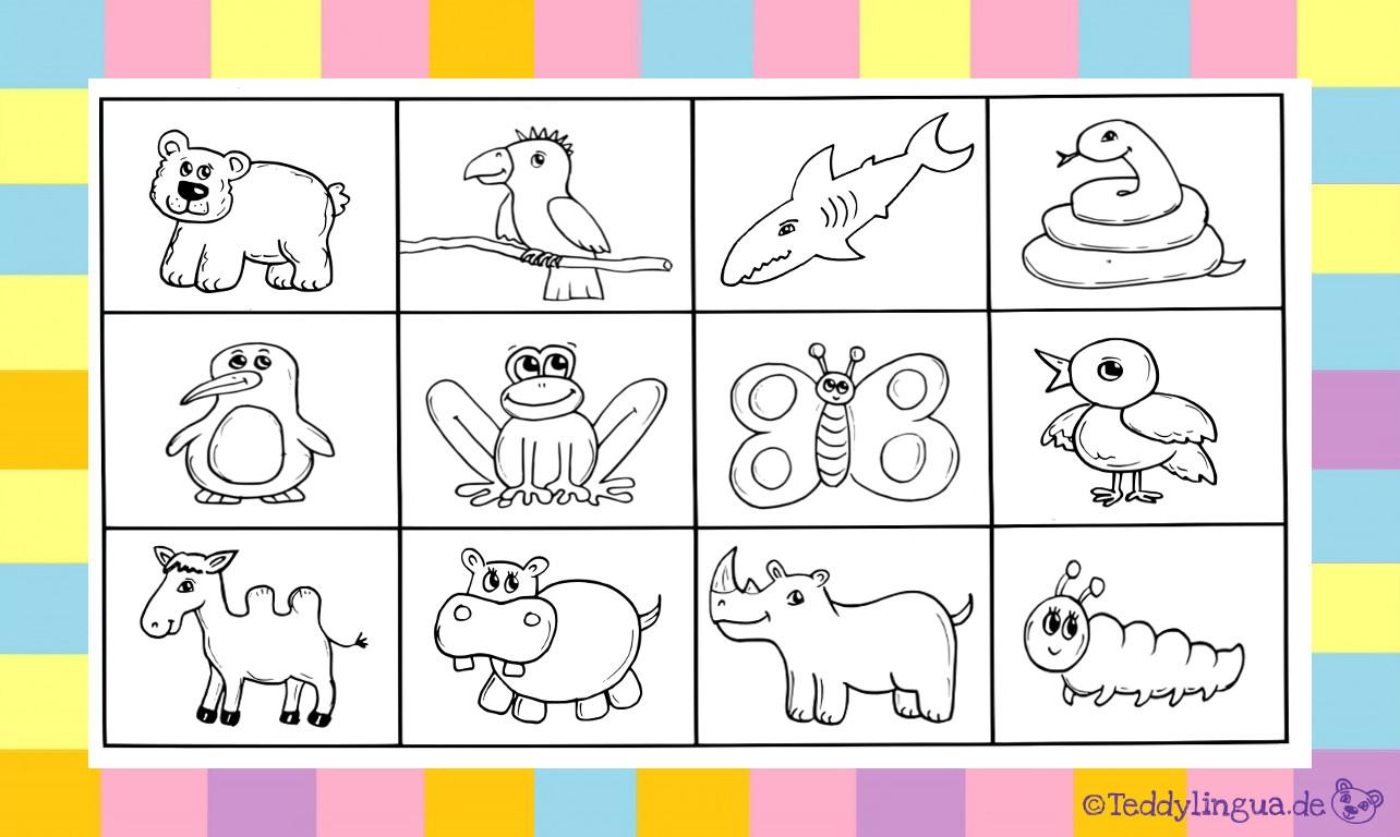 Tiere kennenlernen im kindergarten