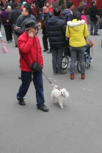 Sichuan People (21) (533x800)