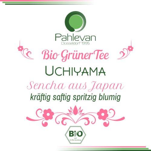 Bio Grüner Tee Sencha Uchiyama | aus Japan kräftig saftig spritzig blumig von Tee Pahlevan