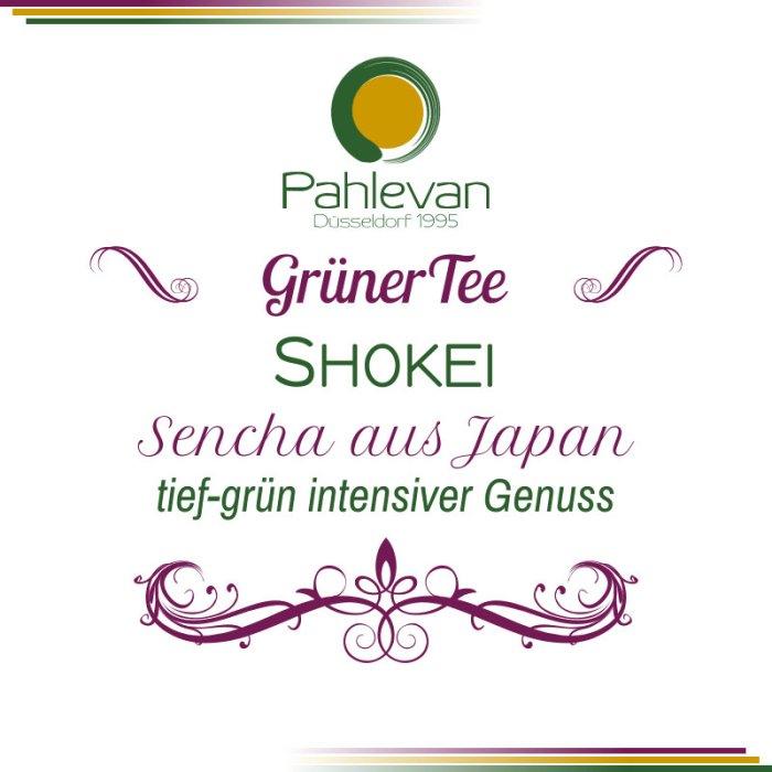 Grüner Tee Sencha Shokei | aus Japan tief-grün intensiver Genuss von Tee Pahlevan