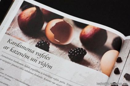 Pavārgrāmatas Spēcinoši receptes