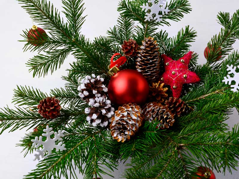 How to Create a Beautiful Christmas Centerpiece for Your Office