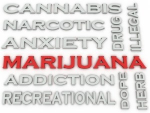 Marijuana is not good for your teenager. Credit: david castillo dominici via freedigitalphotos.net