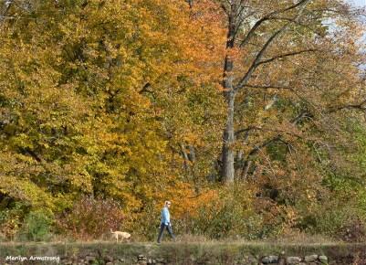 72-dog-walking-river-bend-sz40-ma-10172016_08