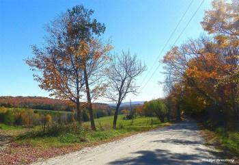 72-country-road-peacham-sunday_101
