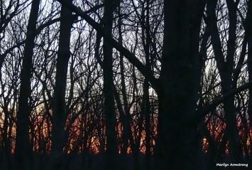 180-winter-clean-dawn-02012017_10