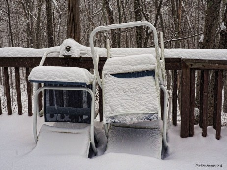 300-chairs-in-winter-oddballs-120217_009