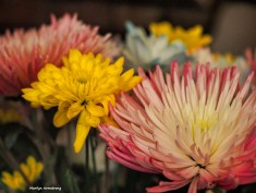 300-spring-bouquet-041517_024