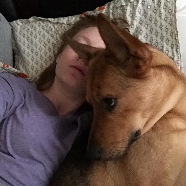 心情不好嗎?這28隻超療癒的貼心動物會把你的憂鬱一掃而空!