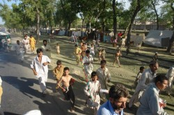 Roadside IDPs running for food