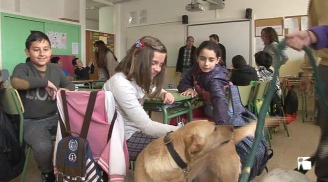 15/03 Jornada a l'escola de Cas Serres per aprendre a tractar una mascota