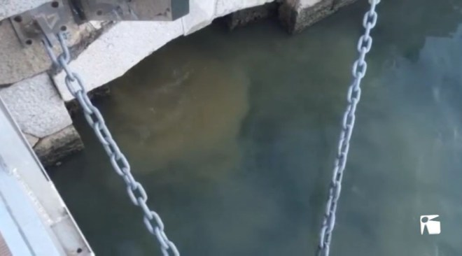 29/05 Nou vessaments d'aigues fecals al port d'Eivissa deixa una mala imatge als turistes de la zona.