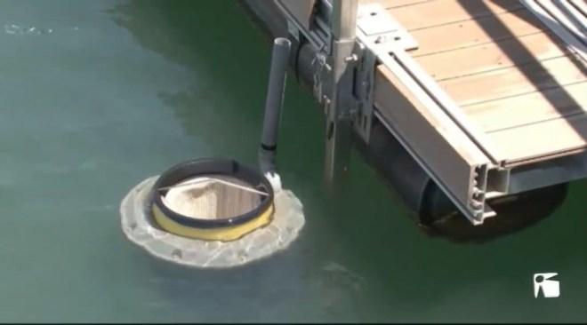 13/06 El port de Vila instal•la papereres flotants per tenir-lo net.