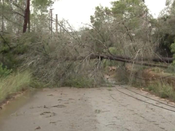 22/10/2019 Tres carreteres tallades per centenars de pins tombats i inundacions