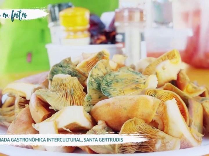 17/11 Eivissa en Festes – VII Jornada Gastronòmica Intercultural