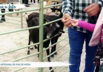 16/02 Eivissa en Festes - Fira Artesanal del Puig de Missa