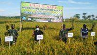 Hasil Panen Biotani Binaan Kodim 1417 Kendari Meningkat