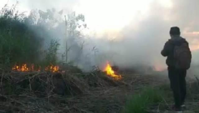 Kebakaran Hutan di Kolaka Timur Meluas hingga 25 Hektare