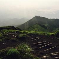 頂上からの風景