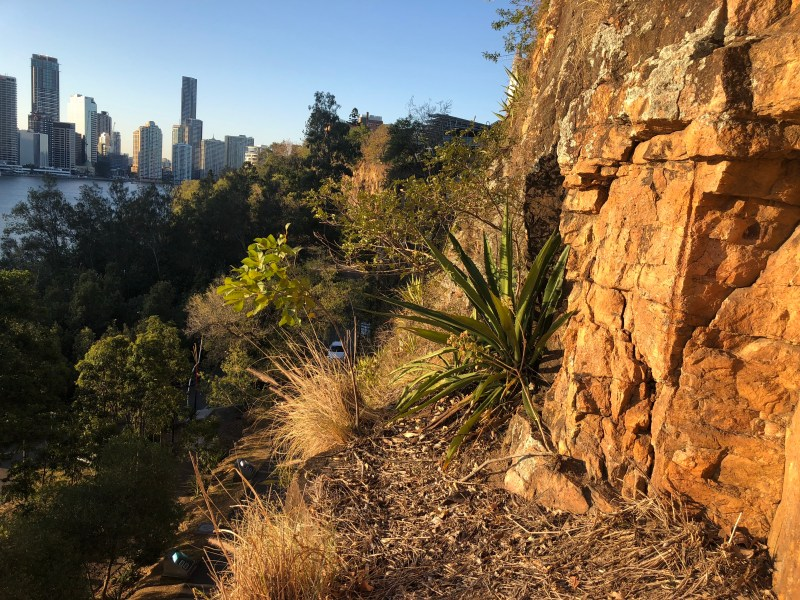 Cliff edge with city views in background