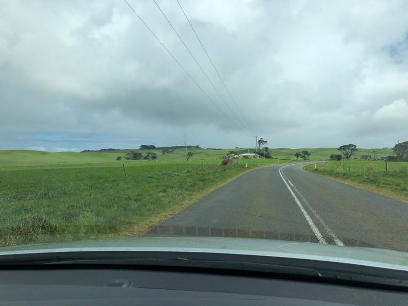 Road through green landscape