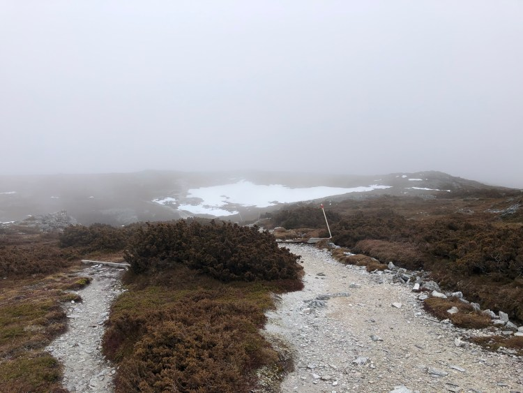 fog and snow on mountain