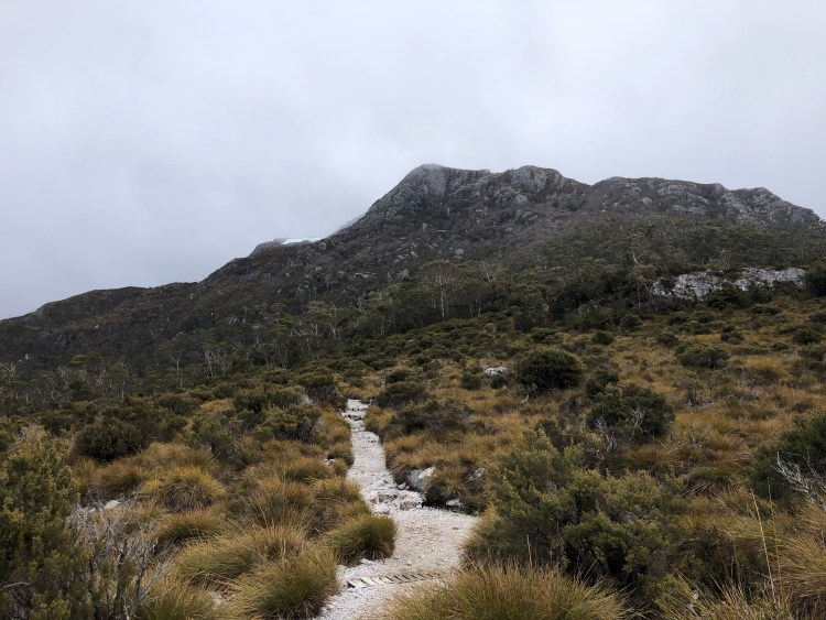 hiking trail with mountain