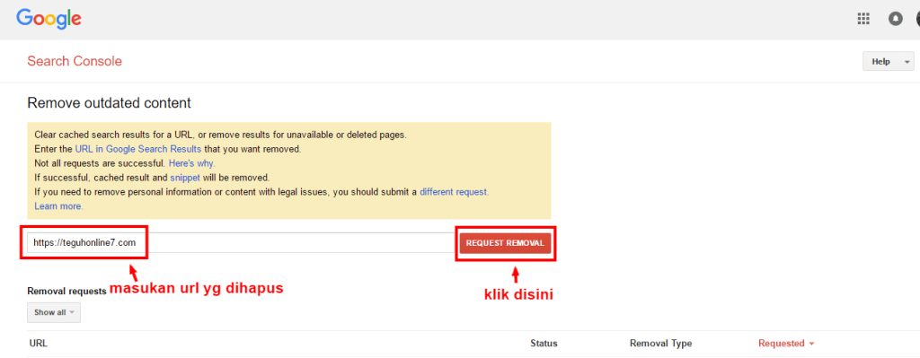 Search Console My Removal Requests
